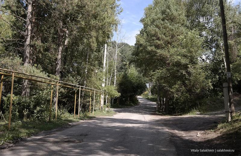 Березовая роща Алматы как добраться